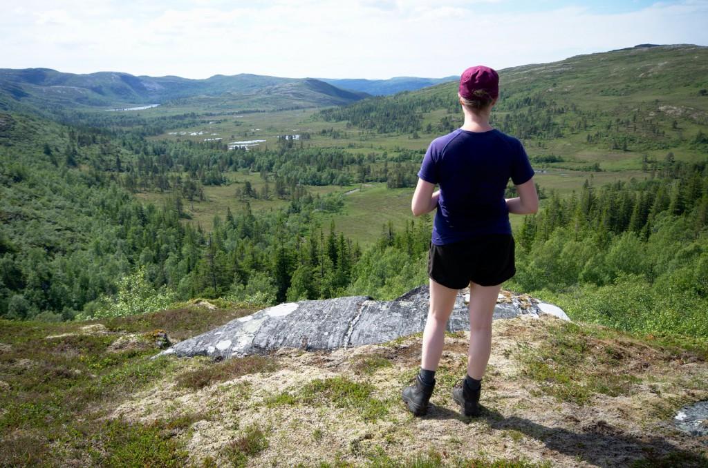 Fosen: Bølgende åser, myrer, spredt skog og enkelte partier med bart fjell