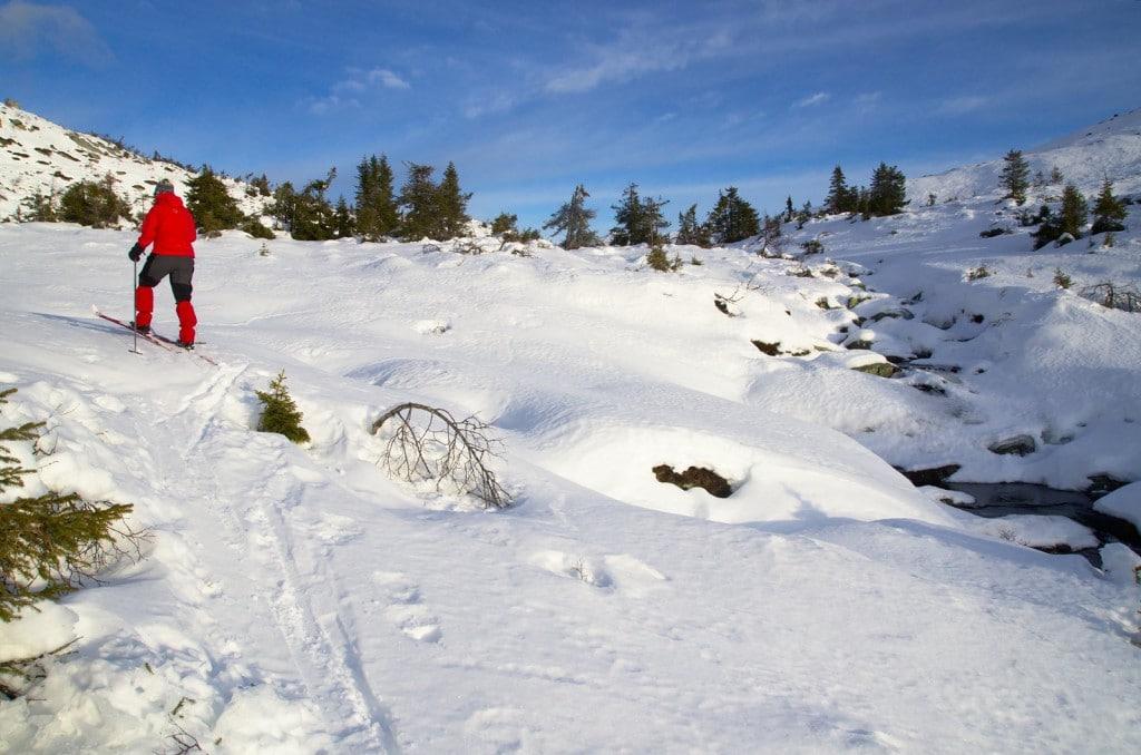 På vei opp Fjelldalen