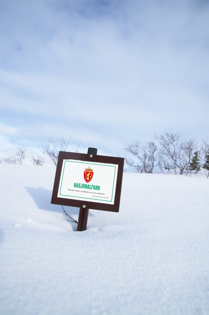 Blåfjella-Skjækerfjella nasjonalpark - ikke verst når målet for turen ligger under en mil fra parkeringsplassen