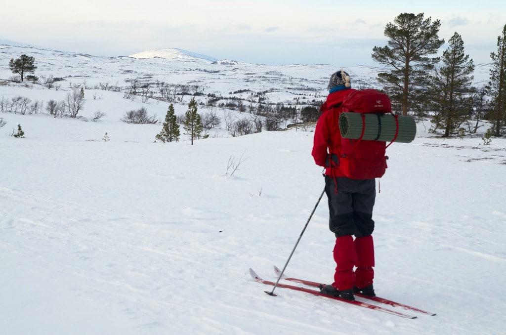 På vei innover mot Jøldalshytta er det enkelt skiterreng; i påsken brøyter de visst enda lenger og kjører spor helt frem.